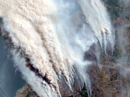 town burns during chile wildfire, complete town burns down in chile video, town burns down chile january 2017 video, chile, wildfires, chile wildfires 2017, chile fire 2017,