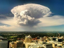 mushroom cloud adelaide australia, mushroom cloud adelaide australia pictures, mushroom cloud adelaide australia video, cumulonimbus cloud march 2017 pictures