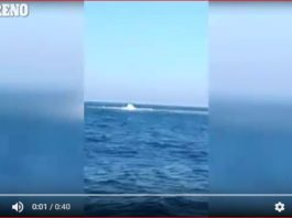 mysterious underwater volcano eruption italy, mysterious underwater volcano eruption italy video, mysterious underwater volcano eruption italy march 2017, Underwater volcano erupts in the Tyrrhenian Sea off Montecristo (Italy) in mysterious explosions releasing water, mud, gas and debris (video), Fishermen film underwater mud volcano eruption in mysterious explosions releasing water, mud, gas and debris in Tyrrhenian Sea off Montecristo (Italy). video,