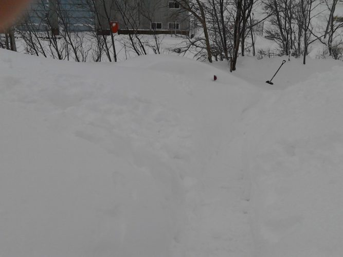 blizzard newfoundland canada april 2017, record snow newfoundland 2017, gander snow record april 2017