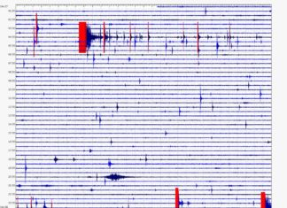 mauna loa earthquake, mauna loa earthquake april 2017, swarm earthquake mauna loa april 2017