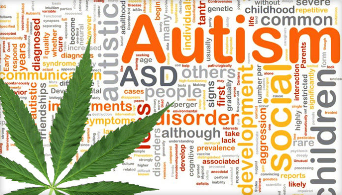 marijuana, marijuana autism, autism miracle treatment, marijuana miracle treatment autism, autism miracle treatment marijuana
