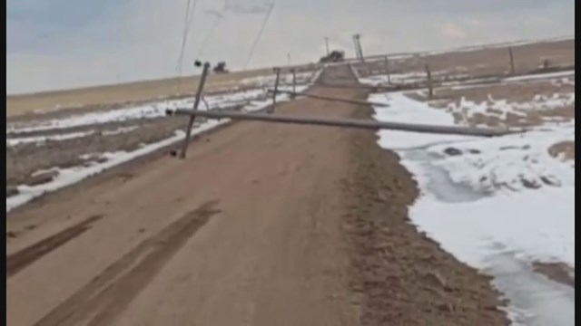 Crops devastated during last weekend snow storm in Colorado