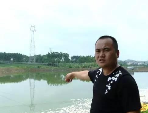 fish die off china