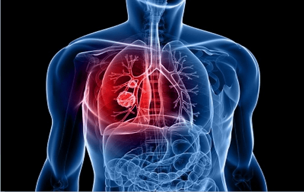 lungs produce blood, New scietific discovery: Lungs produce blood, blood produced by lungs