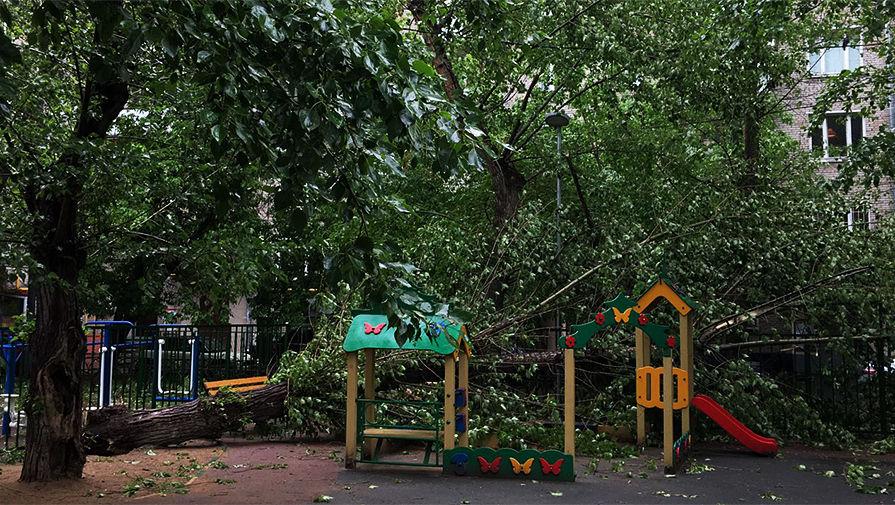 moscow hurricane storm may 29 2017, moscow hurricane storm may 29 2017 video, moscow hurricane storm may 29 2017 pictures, Сильный шторм в Москве и области