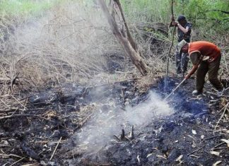 mysterious plume swamp india, smoking swamp india, mysterious smoke coming out of a swamp in India, msterious smoking swamp india