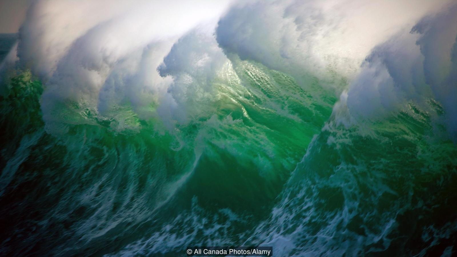 rogue wave, rogue wave prediction, rogue waves, rogue waves are real, how do rogue waves form