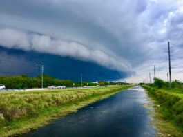 shelf cloud florida, shelf cloud florida pictures, shelf cloud florida video, shelf cloud florida may 2017