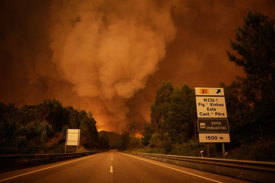 portugal fire, fire kills 62 people in Portugal portugal wildfire june 2017, portugal fire video, fire kills 62 people in Portugal pictures, portugal fire video june 2017