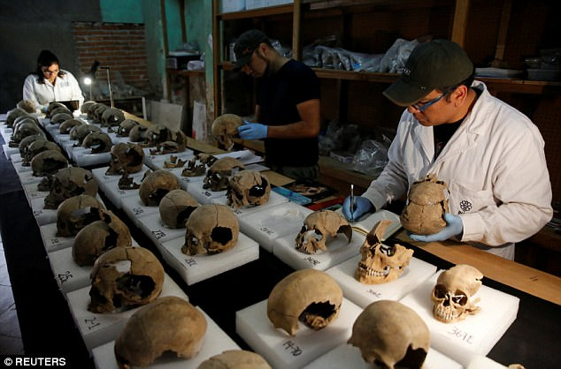 Aztecs tower of skulls, 650 skulls discovered under mexico city, Aztecs tower of skullspictures, Aztecs tower of skulls video,