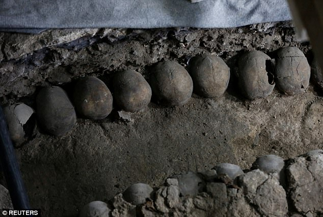 The Aztecs tower of skulls: 650 skulls unearthed in Mexico ...