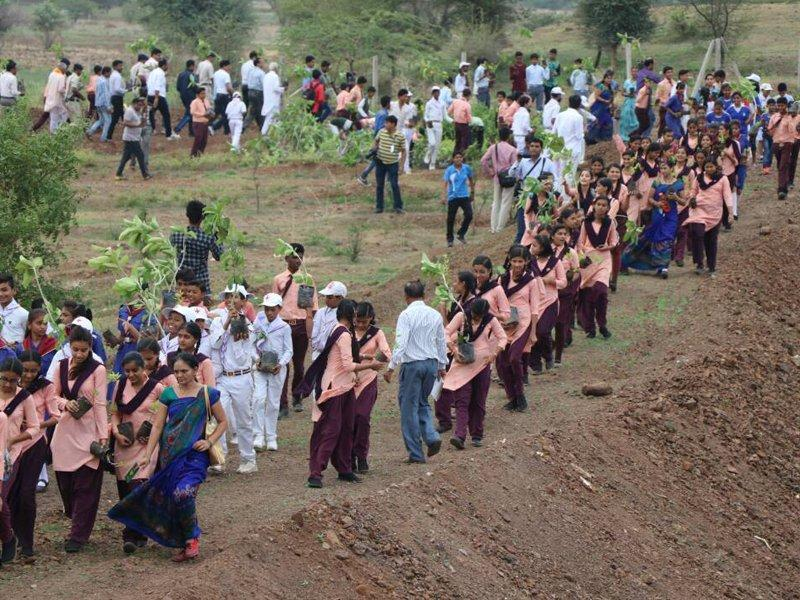 India plants 66 million trees in 12 hours, India plants 66 million trees in 12 hours during environmental action