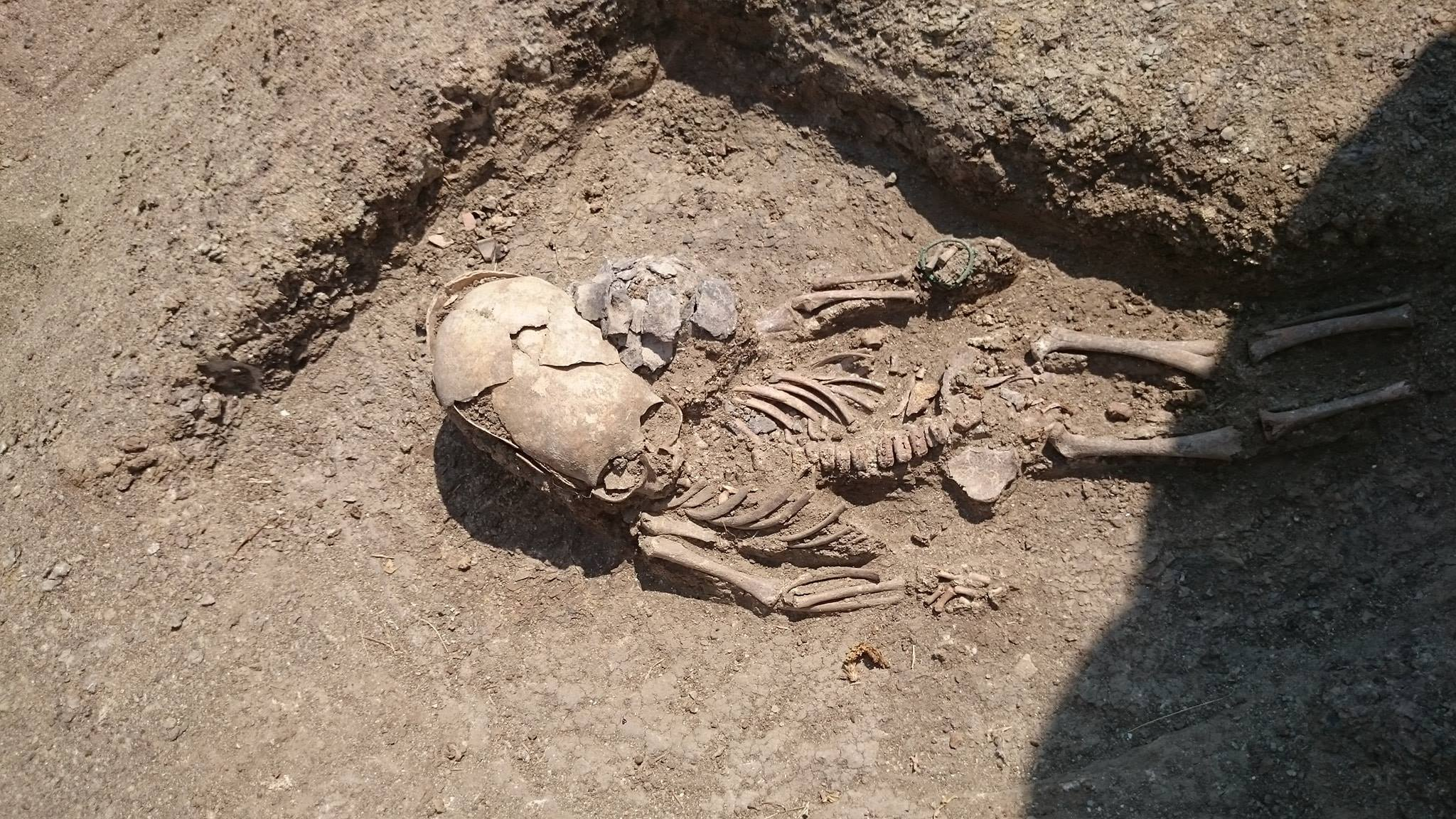 Baby with alien skull discovered in Crimea, alien skull baby crimea, Baby with alien skull discovered in Crimea picture, Baby with alien skull discovered in Crimea video