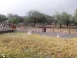 Apocalyptical hailstorm kills sheep and damages cars in northern Spain video, apocalyptical hailstorm spain video