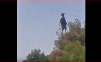 goat power cable video, goat power cable video greece, goat power cable video rescue greece