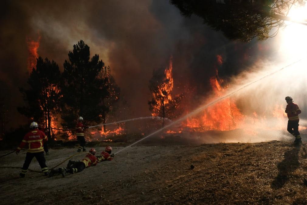 wildfire portugal july 2017, wildfire portugal july 2017 pictures, wildfire portugal july 2017 video