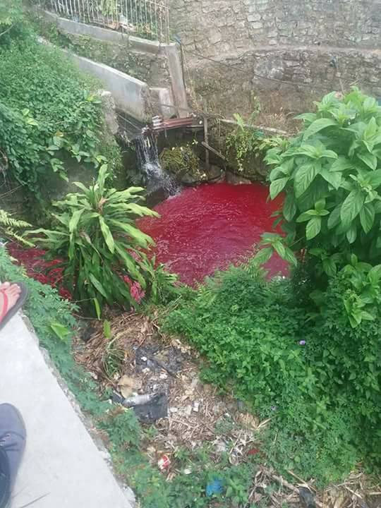 Indonesian River Turns Poisoned Blood-Red