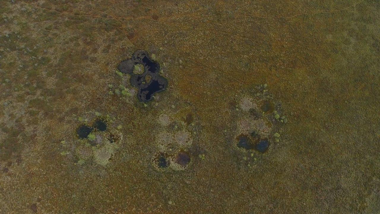 strange holes russia taiga, strange holes russia, mysterious holes in russian taiga