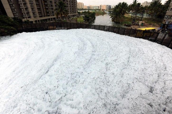 Toxic foam tsunami in Bengaluru after unprecedented downpours, toxic foam bengaluru, toxic foam bengaluru video, toxic foam bengaluru pictures