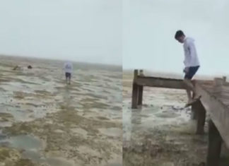 water disappears bahamas, water disappears long island bahamas, water recedes in long island bahamas irma, water disappears long island bahamas