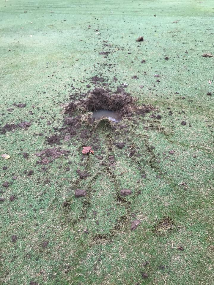 lightning storm, lightning storm arkansas pictures, lightning storm arkansas videos, Lightning strike hits the ground and digs hole in Golf club in Paradise Valley Arkansas