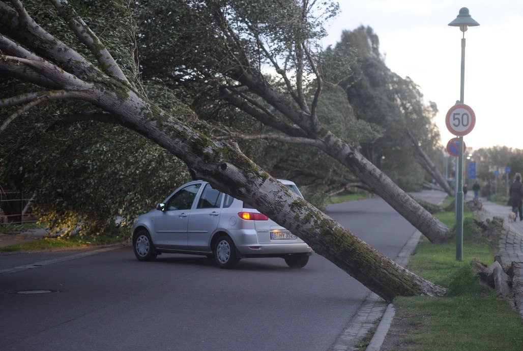 storm xavier, storm xavier octoer 2017, storm xavier germany poland, sturm xavier, sturm xavier video, storm xavier video pictures, sturm xavier foto, Storm Xavier kills 9 and shuts down public transportation and creates huge power outages in Germany and Poland on October 5 2017