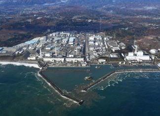 cleaning fukushima