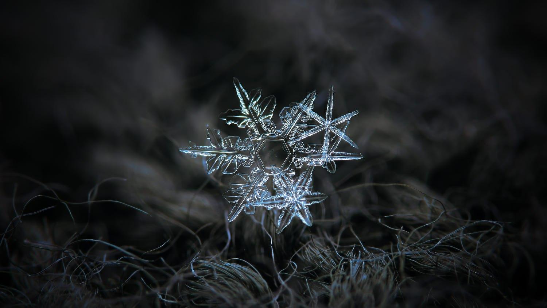 snowflakes, snowflake, snowflakes pictures