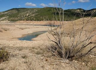 drought is Spain and Portugal is becoming critical, drought is Spain and Portugal is becoming critical. pictures, drought is Spain and Portugal is becoming critical video
