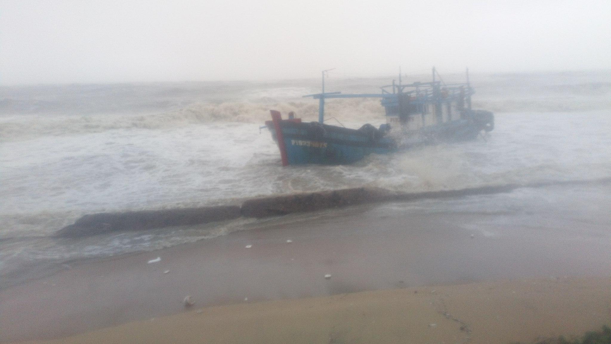 typhoon damrey, typhoon damrey news, typhoon damrey pictures, typhoon damrey videos