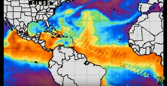 wave anomaly us gulf coast, wave anomaly us gulf coast video, wave anomaly us gulf coast video picture