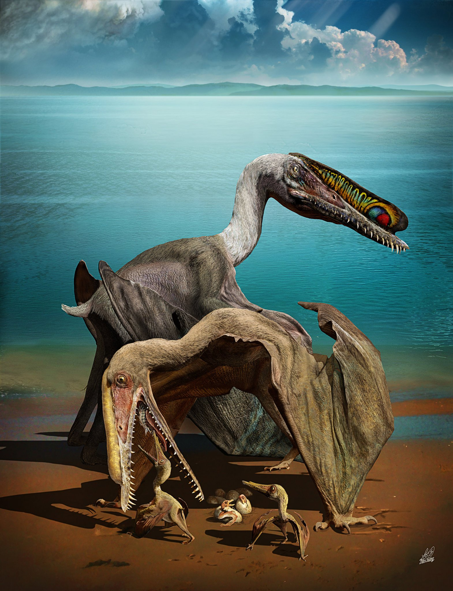 200 pterosaur eggs discovered china, 200 dinosaur eggs china, pterosaur  eggs china gobi, largest pterosaur egg collection ever found