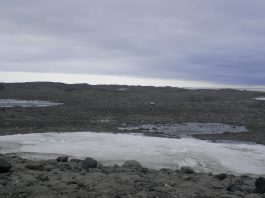 antarctica microbes extreme conditions alien microbes, find alien life, life on other planet, mystery solved antarctica microbes