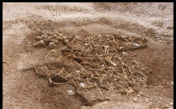 headless vikings burial site, headless vikings burial site uk, headless vikings burial site dorset