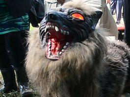 super monster wolf, super monster wolf japan video, super monster wolf robot, super monster wolf robot japan