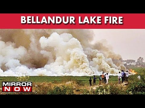bellandur lake fire jan 2018, bellandur lake fire jan 2018 video, bellandur lake fire jan 2018 pictures, bellandur lake fire jan 2018 video january 2018