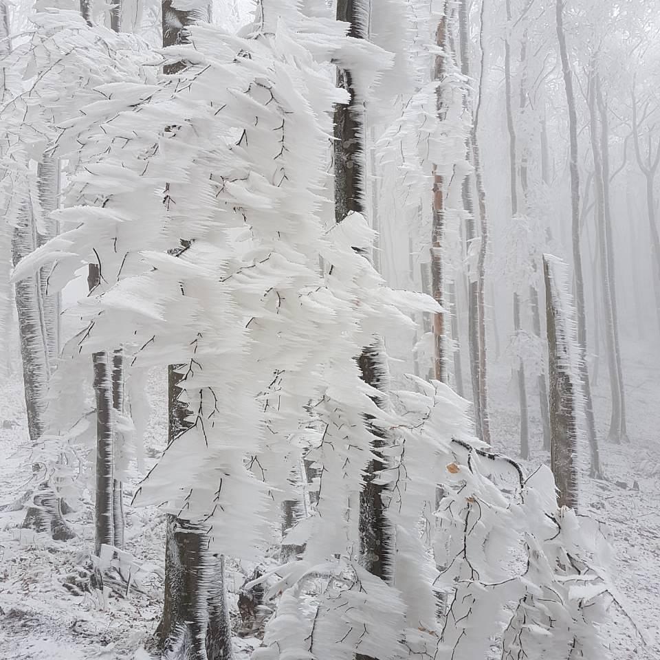 frost deposits croatia, ice sculptures croatia