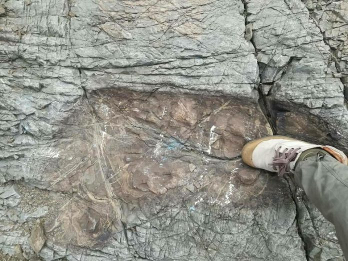 ancient giants found near Tarija Bolivia, footprints of ancient giants found near Tarija Bolivia, footprints of ancient giants found near Tarija Bolivia photo, footprints of ancient giants found near Tarija Bolivia video, footprints of ancient giants found near Tarija Bolivia january 2018