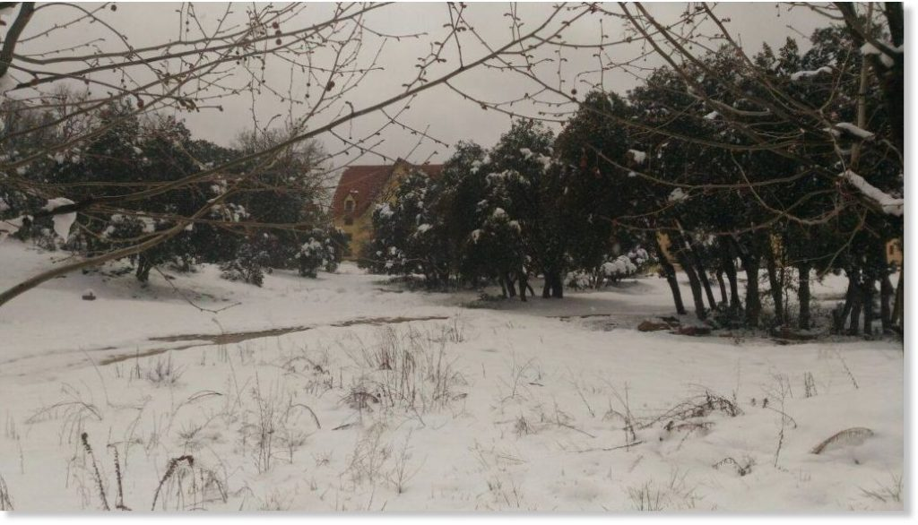 morocco snow 2018, morocco snow 2018 video, morocco unprecedented snow 2018