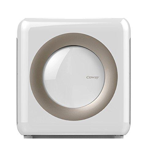 Best air purifier on Amazon, air purifier coway