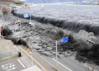 paleontologist predicts 2011 Japan tsunami because of poem, 2011 earthquake japan, 2011 tsunami japan, 2011 tsunami japan predicted by paleontologist because of poem.