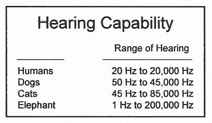 range of hearing, range of hearing for humans
