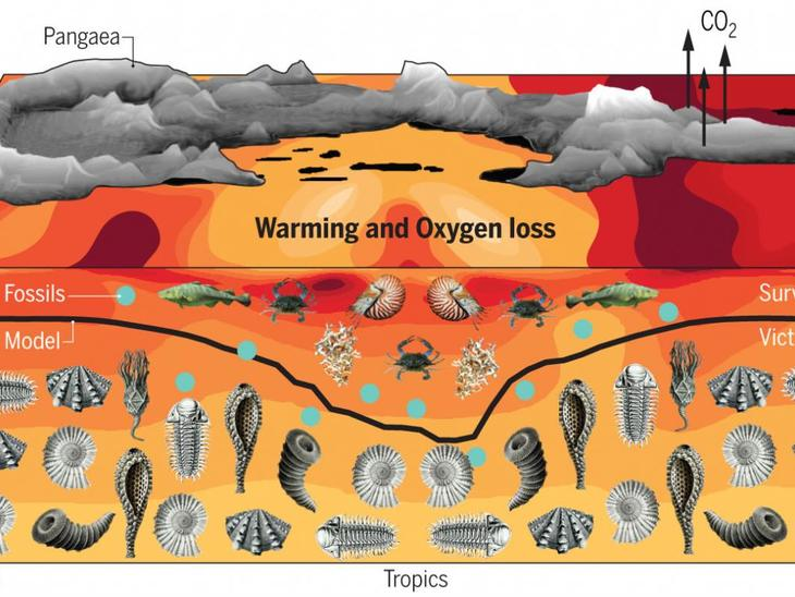 mass extinction, permian mass extinction, worst mass extinction