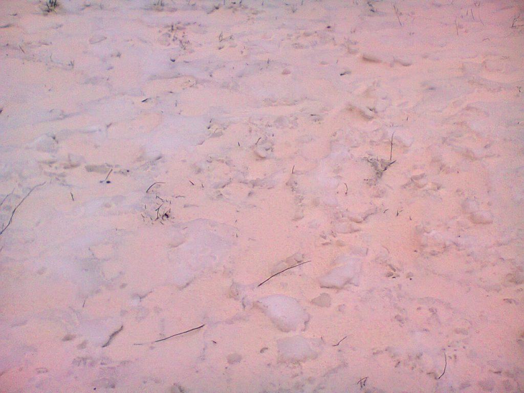 pink snow ukraine, pink snow ukraine pictures, sahara sand storm black sea march 2018