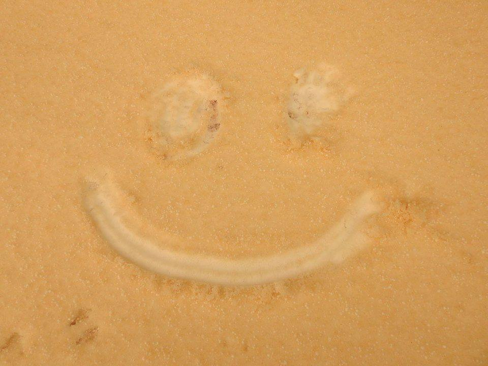 sahara sand sochi russia, sahara dust sochi russia, sahara dust in black sea, sahara dust eastern europe, martian landscape as sahara dust deposits in eastern europe
