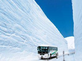 Snow Wall Walk japan, tateyama kurobe alpine route, Snow Wall Walk japan tateyama kurobe alpine route, Snow Wall Walk japan, tateyama kurobe alpine route pictures and video