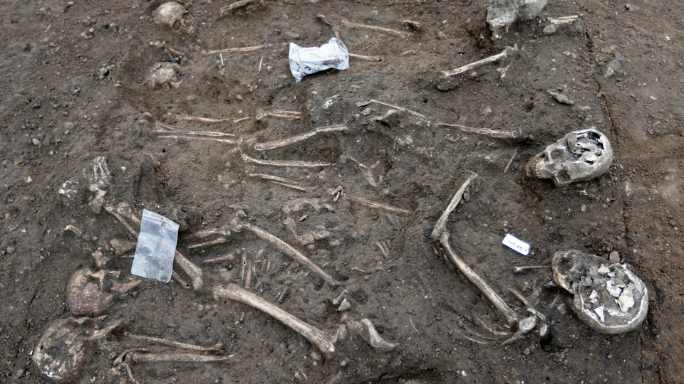 Was There a Civilization On Earth Before Humans, civilisation before humans