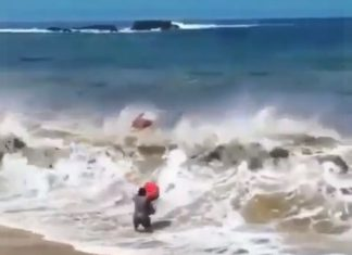 bodyboarder obliterated by wave, wave smashes boodyboarder video