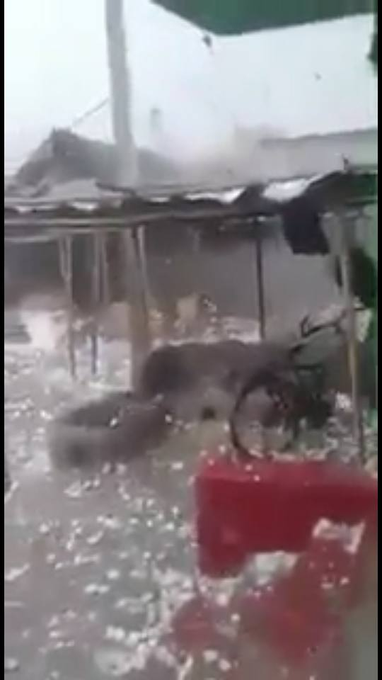 hailstorm kills 50 people in India, hailstorm kills 50 people in India pictures, hailstorm kills 50 people in India video, hailstorm kills 50 people in India april 2018